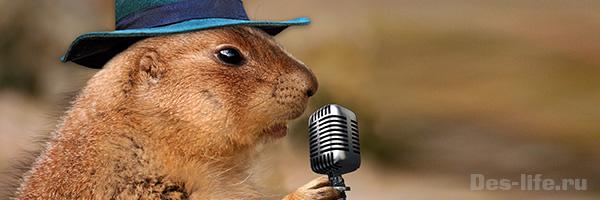 качественная обработка голоса в Adobe Audition