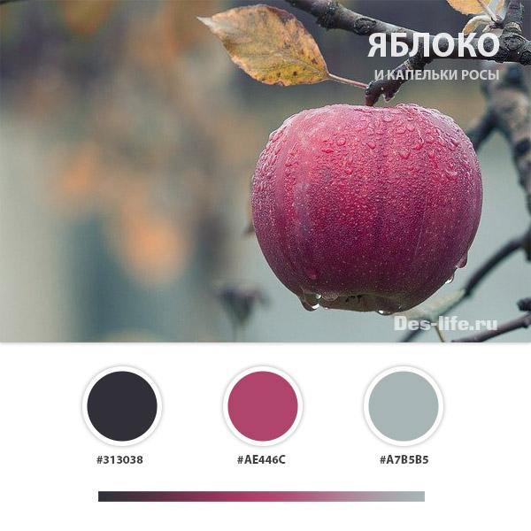 Готовые цветовые схемы для дизайн проектов