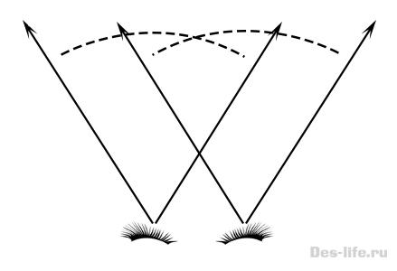 стерео зрение человека